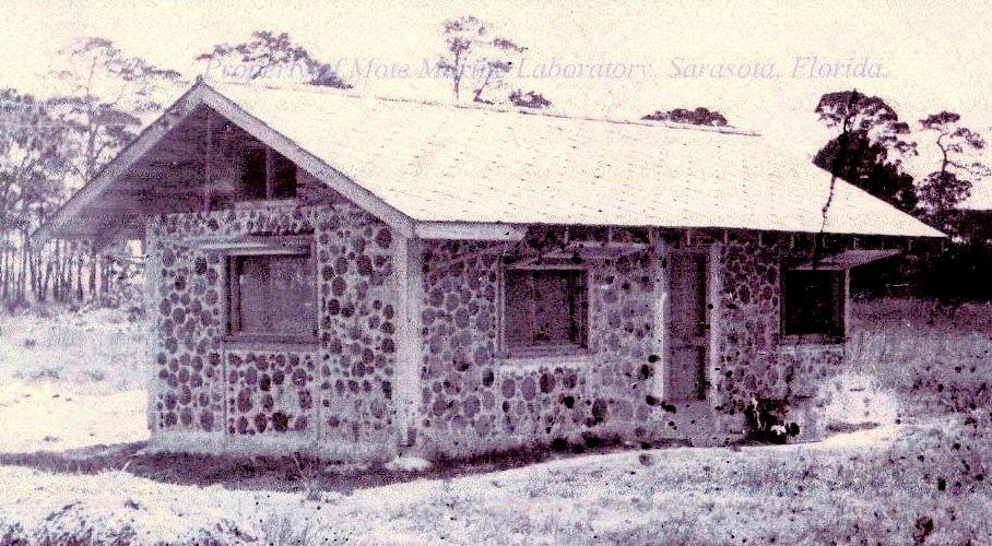 Mrn Zinc Diamonds For Quot Cookie House Quot Re Roof