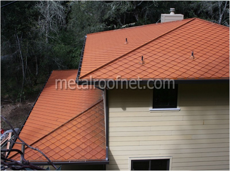 natural steel roof